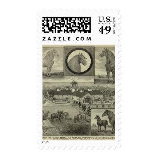 Paint Creek stock Farm, Hiattville, Kansas Postage Stamp