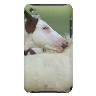 Paint Foals Playing Barely There iPod Case