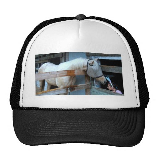 Paint gelding and Child Trucker Hats