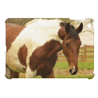 paint-horse-30 iPad mini cases