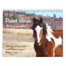 Paint Horse Calendar 2019 Animal Photography