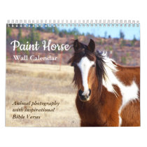 Paint Horse Calendar 2020 Animal Photography