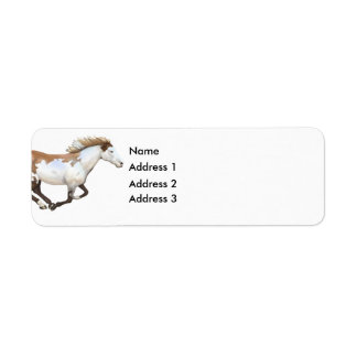 Paint Horse, Dixie, Address 3, Address 2, Addre... Label