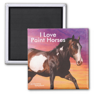 Paint Horse galloping sunrise Magnet