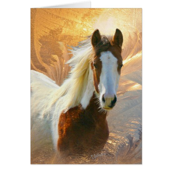 Paint Horse Gold Christmas Cards