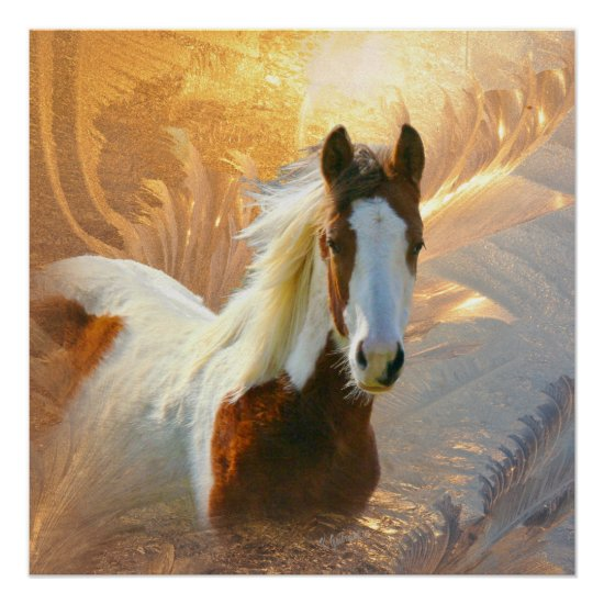 Paint Horse Gold Perfect Poster