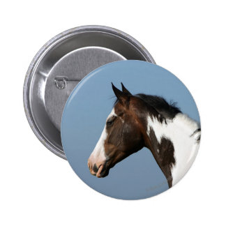 Paint Horse Headshot 1 Pins