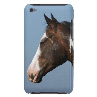Paint Horse Headshot 1 Case-Mate iPod Touch Case