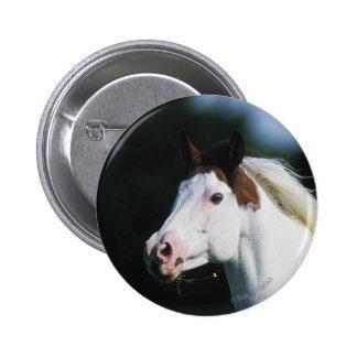 Paint Horse Headshot 3 Button