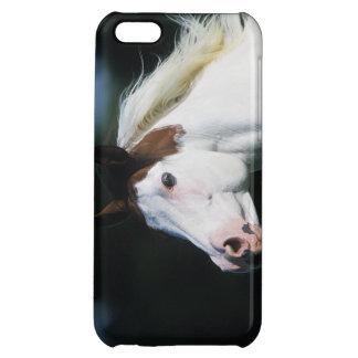 Paint Horse Headshot 3 iPhone 5C Cover