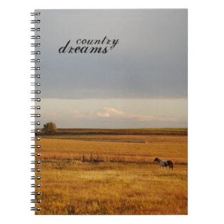 Paint Horse in Field Notebook