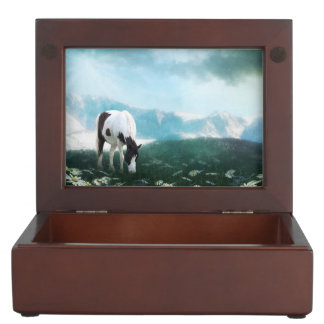 Paint horse in meadow memory box