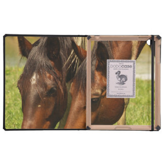 Paint Horse iPad Cover
