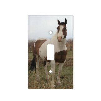 Paint Horse Light Switch Cover