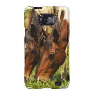 Paint Horse Love Samsung Galaxy Case Samsung Galaxy SII Covers