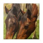 Paint Horse Love Tile