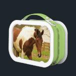 "Paint Horse Lunch Box<br><div class=""desc"">Lunch box</div>"
