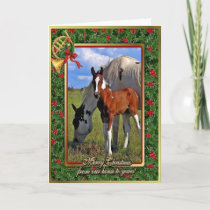 Paint Horse Mare And Foal Blank Christmas Card