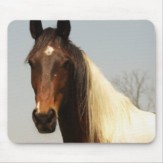 Paint Horse Mouse Pad