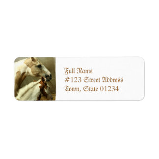 Paint Horse Pair  Mailing Label