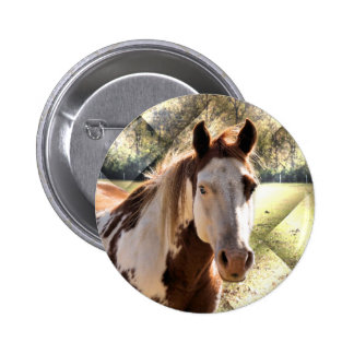 Paint Horse Pin