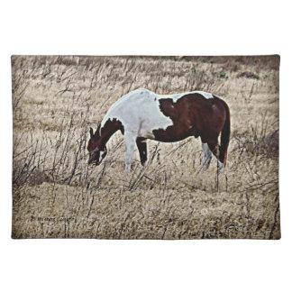 Paint Horse Placemat