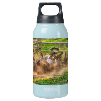 Paint Horse Rolling in Dust Funny Equine Photo Insulated Water Bottle
