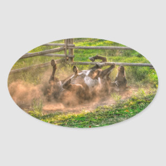 Paint Horse Rolling in Dust Funny Equine Photo Oval Sticker