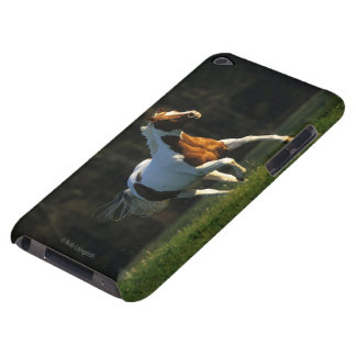 Paint Horse Running Fast Barely There iPod Covers