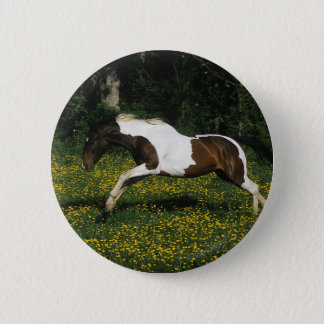 Paint Horse Running in Field of Flowers Pinback Button