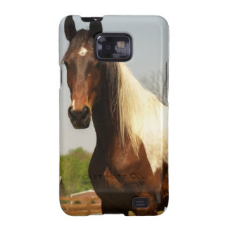 Paint Horse Samsung Galaxy Case Galaxy SII Covers