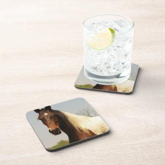 Paint Horse Set of Coasters