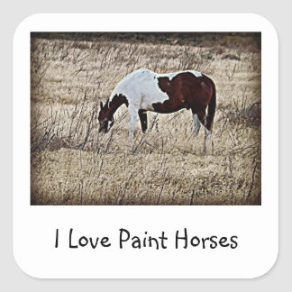 Paint Horse Square Sticker
