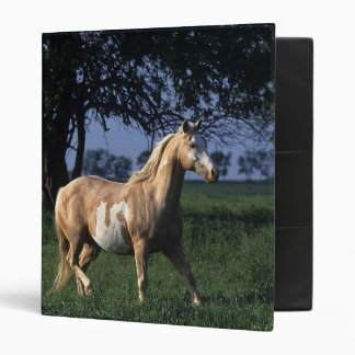 Paint Horse Standing 2 3 Ring Binder