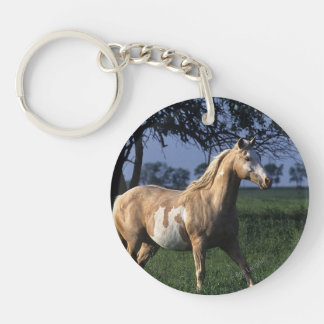 Paint Horse Standing 2 Keychain