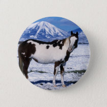 Paint Horse Standing in the Snow Pinback Button