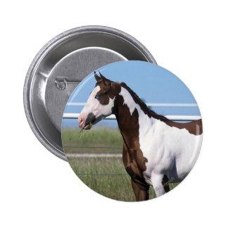 Paint Horse Standing Pinback Button