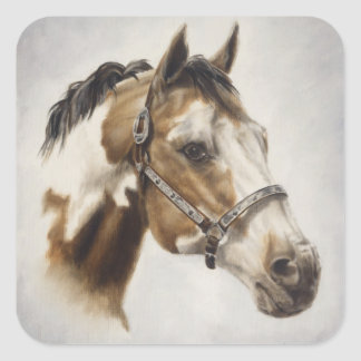 Paint Horse Sticker