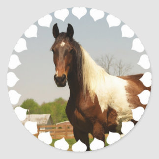 Paint Horse Stickers