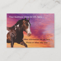 Paint Horse sunrise Business Cards