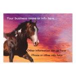 Paint Horse sunrise Business Cards