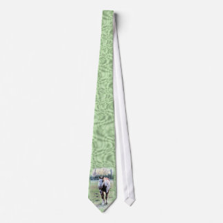Paint Horse Tie for anyone