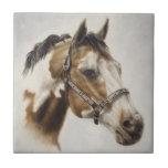 Paint Horse Tile