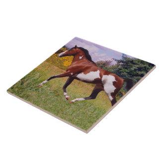 Paint Horse Trotting Tile