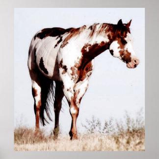 Paint Horse Watercolor Poster Print