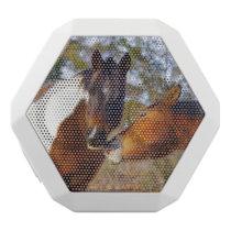 Paint Horse White Boombot Rex Bluetooth Speaker