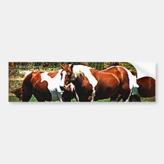 Paint Horses Car Bumper Sticker