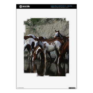 Paint Horses Drinking iPad 3 Decals