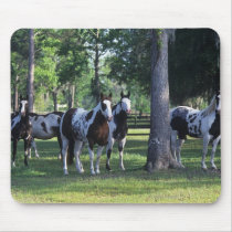 Paint Horses in the Trees Mouse Pad