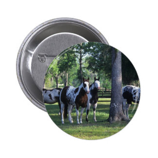 Paint Horses in the Trees Pinback Button